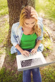 High angle view of woman using laptop while sitting under tree Royalty Free Stock Photos