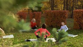 High angle view of women relaxing during zen meditation in park