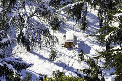High angle view of wooden picnic table and trees covered by snow in a forest Royalty Free Stock Photo