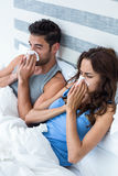 High angle view of young couple covering nose while sneezing on bed Royalty Free Stock Image