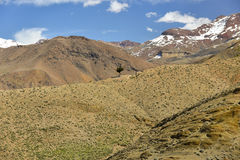 High Atlas mountains in Morocco Royalty Free Stock Photography