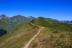High attitude trail to mountain top covered with alpine meadows Stock Photography
