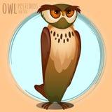 High brown owl, cartoon series. High brown owl, vector cartoon series owls Stock Image