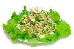 High-calorie salad Royalty Free Stock Photos