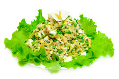 High-calorie salad Royalty Free Stock Image
