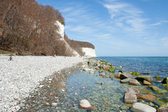 High chalk cliffs at the coast of Ruegen Royalty Free Stock Photography