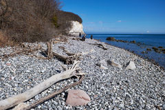 High chalk cliffs at the coast of Rugen island. Germany Royalty Free Stock Photos