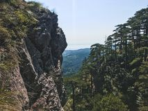 High cliff under the forest of Crimea stock photography