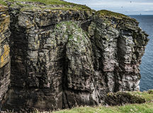 High cliffs on Isle of Noss, Shetland. Precipice-edge view of the high, rugged seacliffs of the Isle of Noss, Shetland royalty free stock photography