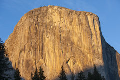 High cliffs of Yosemite's El Capitan Royalty Free Stock Photography