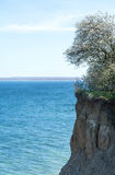 High coast cliff at the Baltic Sea, Luebeck Travemuende Stock Photos