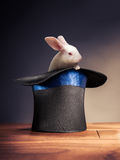 High contrast image of magician hat on a stage. Photo composite of a rabbit in a magician hat stock photography