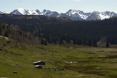 High Country Cow Camp Stock Image