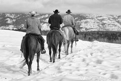 High Country Cowboys royalty free stock photos