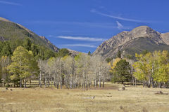 High Country Landscape in Fall Royalty Free Stock Photography