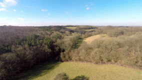 High countryside view. Aerial footage moving slowly up above the Trees stock video