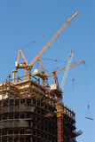 High Cranes. And building construction Stock Photography