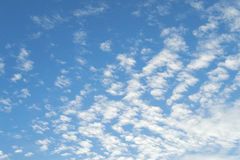 High Cumulus or Altocumulus clouds in deep blue spring sky Stock Photos