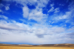 The high dark blue sky above Yellowstone Royalty Free Stock Images