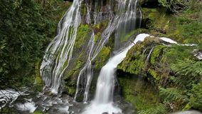 High Definition Movie of Long Exposure Water Flowing at Panther Creek Falls in Skamania County Washington 1920x1080 HD.  stock footage
