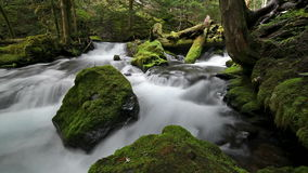 High Definition Movie of Long Exposure Water Flowing at Panther Creek Falls in Skamania County Washington 1080p.  stock video footage