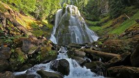 High Definition Movie with Water Audio Sound of Majestic Falls Creek Falls in Skamania County Washington State 1080p. High Definition Movie with Water Audio stock video footage