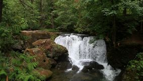 Video of Whatcom Falls in Bellingham WA with audio sound 1080p hd stock video footage