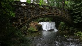 Video of Whatcom Falls with a old stone bridge with moss and ferns in Bellingham WA 1080p stock footage