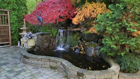 Video of colorful maple trees over water feature in patio garden fall season HD stock video footage