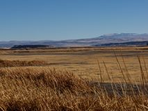 High desert in Oregon. High desert brush in the valley adjacent to the Steens Mountains in eastern Oregon stock images