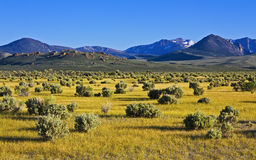 High desert evening. Panorama with sage, shadows, and the Sierra Nevada along road to South Tufa near Lee Vining, California stock photo