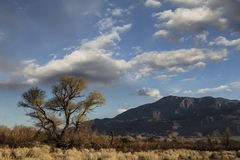 High Desert Evening. High desert landscape near Bishop, California in evening light with mountains and clouds stock image