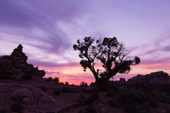 High Desert Sunset Royalty Free Stock Photos