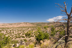 High desert wilderness. A view across the dry wilderness of high desert of Northern New Mexico, USA royalty free stock photos