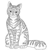 High detail patterned cat. Stock Photography