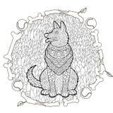 High detail patterned German shepherd. Stock Photo