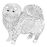 High detail patterned Pomeranian dog. Royalty Free Stock Images