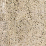 High detailed cork board texture, close up Royalty Free Stock Image