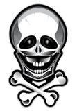 high detailed skull Royalty Free Stock Photo