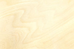 High-detailed surface of plywood material for background Stock Images