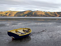High & Dry. Rowboat at Low Tide in Otago Peninsula NZ Royalty Free Stock Images