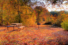 High Dynamic Range image of a campsite. Royalty Free Stock Images