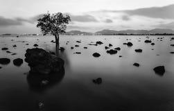High dynamic range technique in twilight, Black and white tone Stock Photo