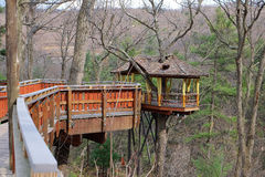 High Elevation Treehouse Royalty Free Stock Image