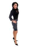 High Fashion Businesswoman Stock Image