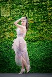 High fashion model with long tulle dress and ponytail standing u. P in semi profile and looking to the camera, near a green leaves wall, in the park. High royalty free stock images