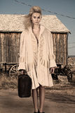 High fashion model with luggage royalty free stock images