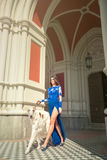 High fashion shot of elegant woman with dog in long blue dress Royalty Free Stock Photos