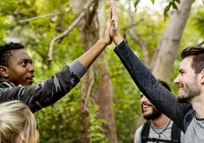 High five in the forest Royalty Free Stock Photos