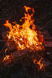 High flame of a bonfire. Fire in night Stock Photography